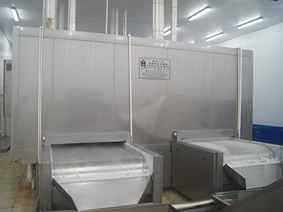 Solid Band Tunnel Freezer